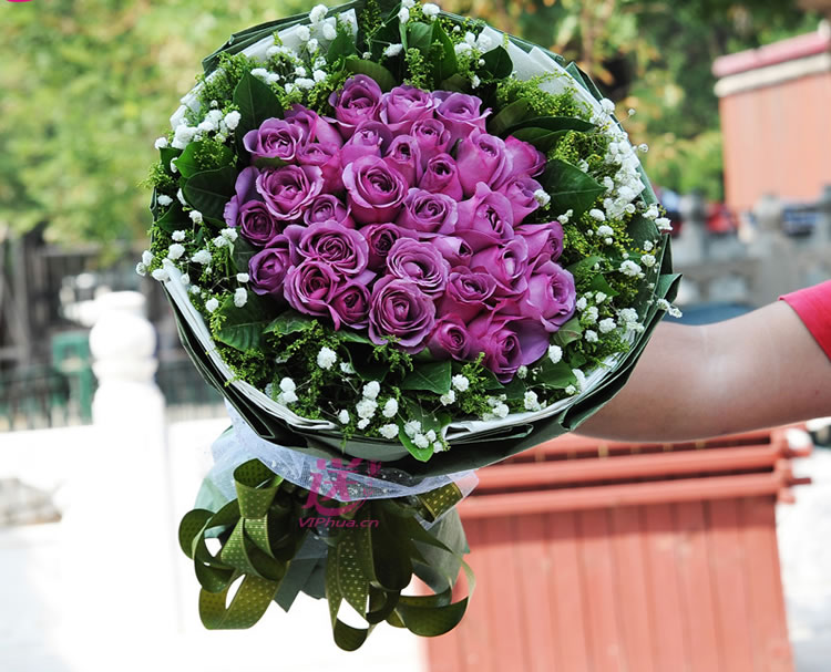陪你看风景—快送鲜花网|送花给女友|鲜花店|七夕送花上门|网上购买七夕节鲜花