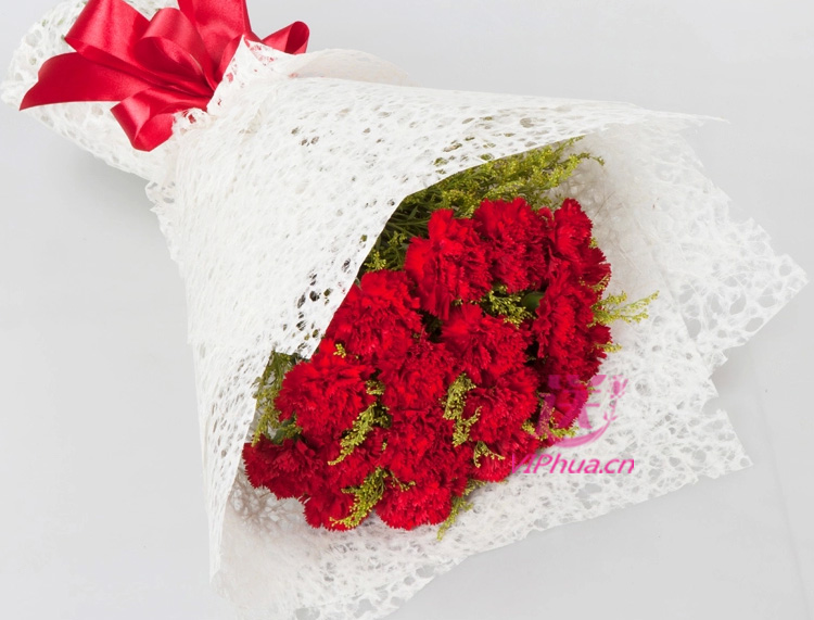 关爱—快送鲜花网|母亲节花束|邮政订花|异地送鲜花|送康乃馨