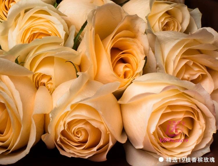 今生幸福—快送鲜花网 石家庄鲜花 订花网 情人节鲜花预订 异地订花