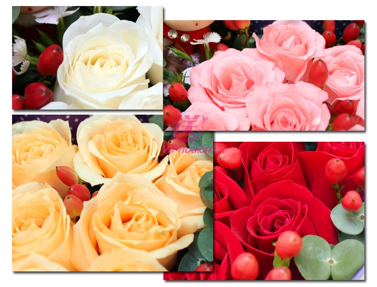 每一分每一秒—快送鲜花网 石家庄鲜花 同城订花网 鲜花预订 情人节鲜花 送女朋友