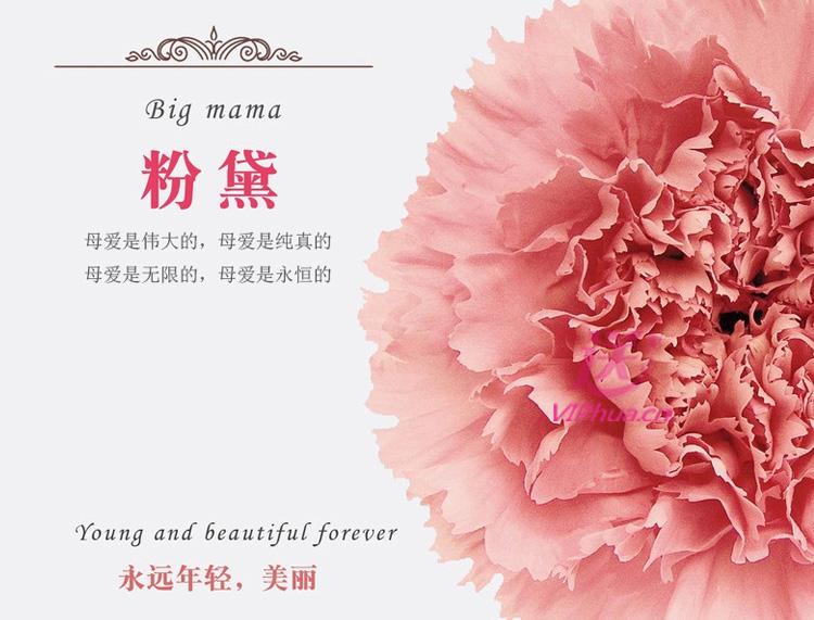 感激感恩—快送鲜花网 母亲节订花 鲜花速递 在线订鲜花 鲜花速递哪个网站好