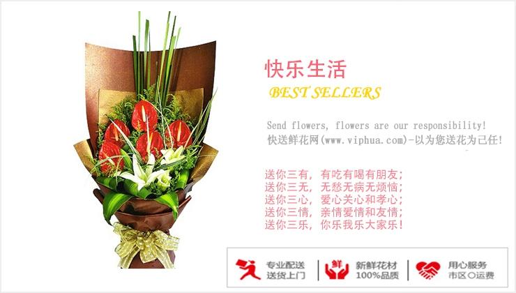 快乐生活—快送鲜花网|父亲节鲜花|父亲节礼物|父亲节送花|生日鲜花预定|网上订购鲜花
