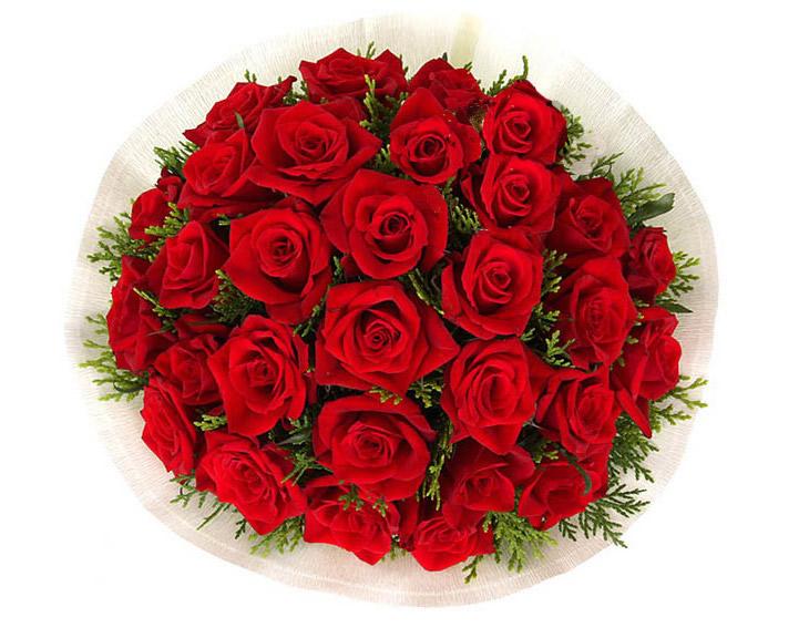 遥寄相思—快送鲜花网|送生日礼物|网上订购生日鲜花|异地给女友生日礼物|鲜花蛋糕网