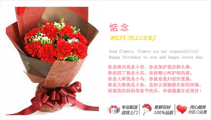 惦念—快送鲜花网|母亲节花束|母亲节订花|异地送鲜花|送康乃馨